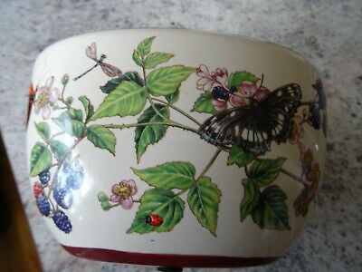Cache/Plant Pot  With Butterfly /Dragonfly /Ladybird And Berries - OVAL- Ceramic • 18£