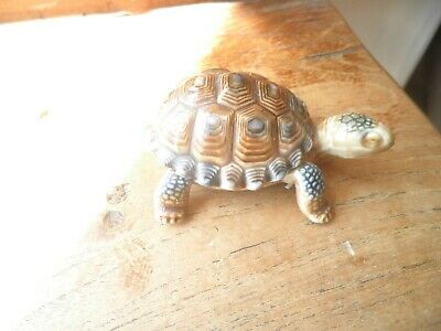 Wade Tortoise, Pin Box/ashtray? • 0.99£