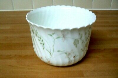Wedgwood Bone China PLANTER - CAMPION  • 2.99£
