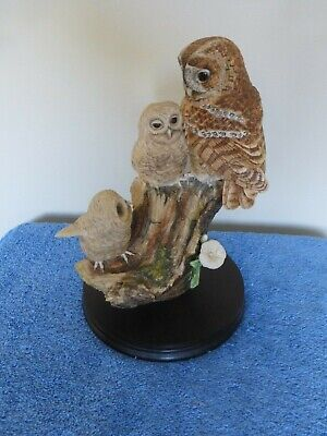 Border Fine Arts Tawny Owl And Young • 44.99£