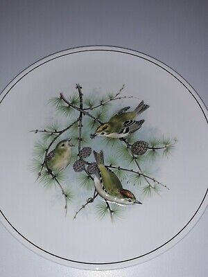 ROYAL WORCESTER SPODE Bird Plate. Perfect Condition. • 2.50£