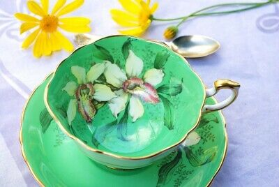 Rare PARAGON English Bone China Tea Cup & Saucer, GREEN ORCHID, A1583 DW • 300£