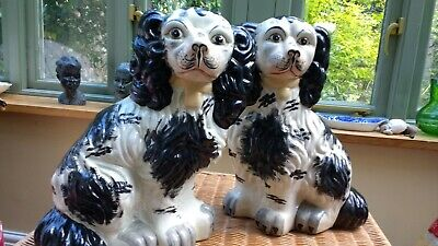 Antique Vintage Staffordshire Pair Of Spaniels Dogs Large 12  • 95£