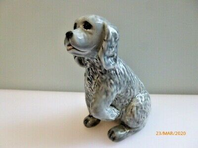 Wade    -  Grey Fair Puppy  • 14£