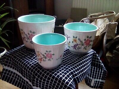 James Kent Old Foley CHINESE ROSE Plant Pot Collection • 19£