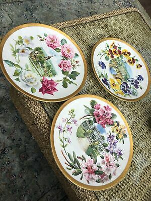 Royal Doulton Chatsworth Florals Collection 3 Plates No 126 140 And 116 • 16£