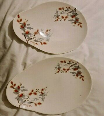 Royal Staffordshire Clarice Cliff  Oval Serving Dish/Plate    • 50£