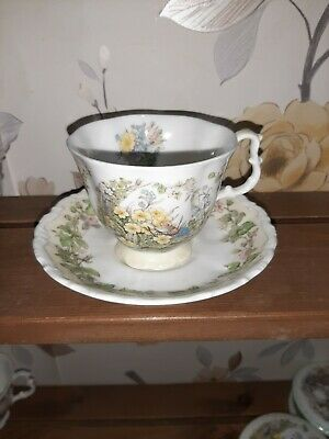Royal Doulton Brambly Hedge Spring Teacup And Saucer • 8.40£