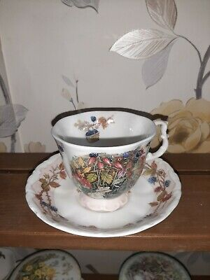 Royal Doulton Brambly Hedge Autumn Teacup And Saucer  • 12.40£