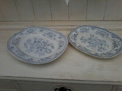 Burleigh Pottery Asiatic Pheasants Pale Blue/White Serving Plates X 2 • 42£