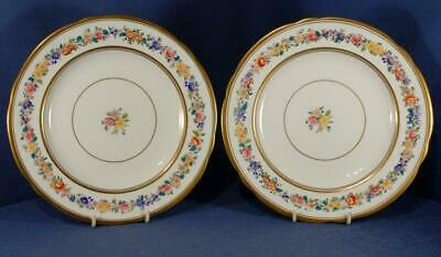 2 X Hand Decorated Plates Floral & Gilt Pattern Marked To Rear 6079 • 10£
