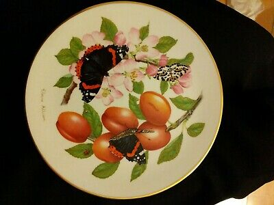 Bone China Royal Grafton The Beauty Of Butterflies Plate Red Admiral • 3.99£