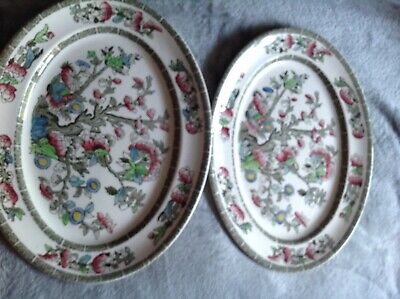 Pair Of Indian Tree Dinner Plates  • 3.20£