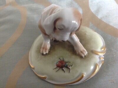 Capidimonte? Vintage Italian Porcelain Figure Inquisitive Dog Watching A Beetle  • 10£