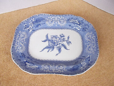 Copeland Spode's Camilla Meat / Serving Plates  C.1910 • 21.99£
