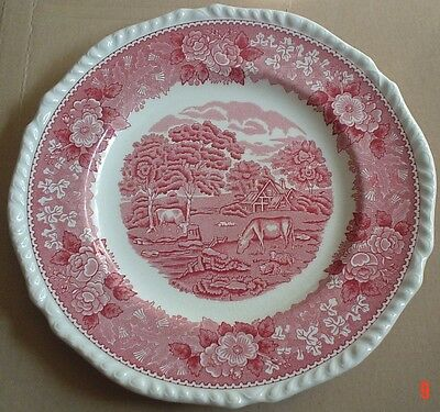 Adams English Scenic Pink Red Salad Breakfast Plate • 10.99£