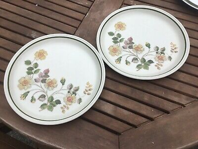 M & S MARKS & SPENCER – AUTUMN LEAVES DINNER PLATES X 2  • 12.99£