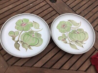 Denby Troubadour Dinner Plates X 2 Diameter 10 Inches • 14.99£