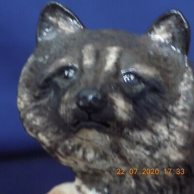 Beswick Racoon. In Perfect Condition 11cm. Tall. A Rare Piece  • 100£