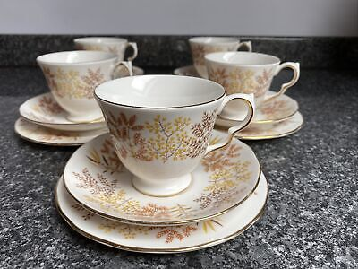Royal Vale Ferns And Grasses  Tea Cup,Saucer & Side Plates Pattern 8678 X5 Sets • 29.99£