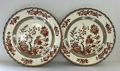 Copeland Spode Indian Tree Brown & White Fluted 10. 5  Diameter Dinner Plate X 2 • 15£